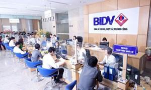 Các nhân tố ảnh hưởng đến quyết định vay vốn của khách hàng cá nhân tại BIDV Trà Vinh
