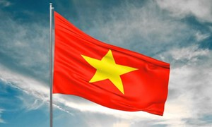 [Infographic] Dấu ấn Việt Nam trong những sự kiện đa phương quan trọng
