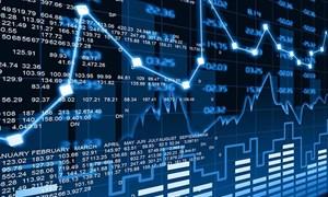 [Infographic] Bức tranh thị trường cổ phiếu HNX tháng 02/2019