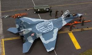 Tiêm kích MiG-29 Ba Lan vừa rơi được mua với giá... 1 euro