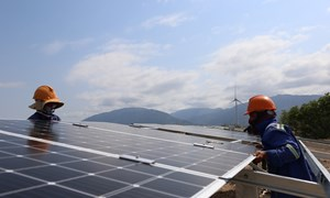 [Video] Cánh đồng điện mặt trời lớn nhất Việt Nam sắp hoạt động