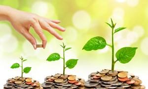 Dấu ấn trong phát triển kinh tế tư nhân Việt Nam