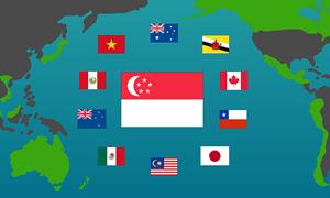 CPTPP có hiệu lực - Cơ hội cho doanh nghiệp Singapore