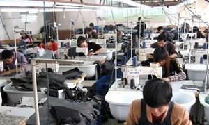 Hơn 5.000 dòng thuế về 0% khi FTA Việt Nam - EAEU có hiệu lực