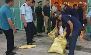 Lực lượng hải quan phát hiện lô ngà voi giá hàng chục tỷ đồng