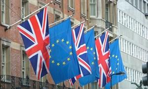 Nước Anh có thể duy trì thương mại tự do với EU hậu Brexit