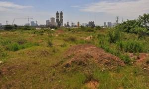 Hà Nội thu hồi đất không sử dụng quá 12 tháng