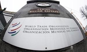 WTO đánh giá cao những thành tựu kinh tế - xã hội của Việt Nam