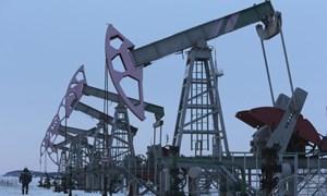 Thị trường dầu mỏ ổn định nhanh hơn kì vọng