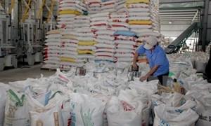 Xuất khẩu gạo năm 2017 sẽ đạt trên 5 triệu tấn