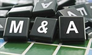 2017 - Năm khó đoán định với thị trường M&A thế giới