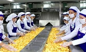 APEC 2017 - Cơ hội để doanh nghiệp Việt trưởng thành