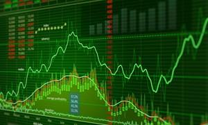 [Infographic] 5 cổ phiếu niêm yết tăng giá mạnh nhất trong tháng 2/2017
