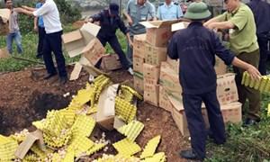 Quảng Ninh: Phát hiện, bắt giữ buôn lậu trong quý I/2017 tăng cao