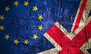 EU công bố kế hoạch đàm phán với Anh về vấn đề Brexit