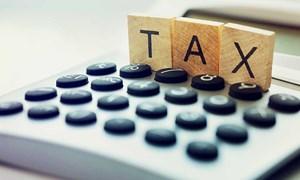 Cục Thuế TP. Hồ Chí Minh mỗi ngày tiếp nhận 1.000 hồ sơ quyết toán thuế
