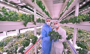 Khuyến khích doanh nghiệp đầu tư nông nghiệp công nghệ cao