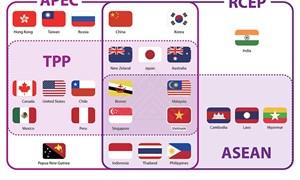RCEP: Câu trả lời cho thương mại toàn cầu?