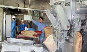Xác định chi phí sản xuất trong các doanh nghiệp sản xuất xi măng