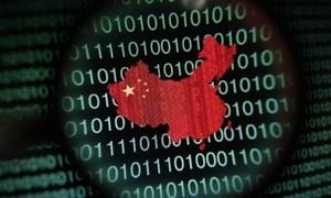 Ứng dụng dữ liệu số trong quản trị ở Trung Quốc: Mặt trái của tiềm năng