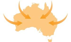 Kinh nghiệm doanh nghiệp cần lưu ý khi xuất khẩu vào Australia