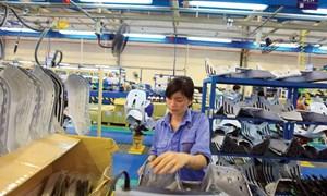 Tăng kết nối doanh nghiệp FDI với khu vực kinh tế tư nhân