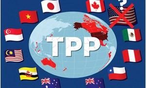 Khi TPP thiếu siêu cường