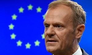 Liên minh châu Âu kêu gọi thúc đẩy thương mại đa phương mở rộng