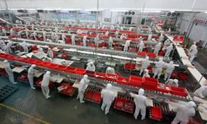 [Video] Những nhà máy thực phẩm khổng lồ của Trung Quốc