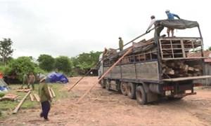 [Video] Chở 40 khối gỗ về xây nhà thì bị bắt