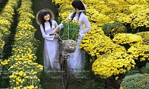 """""""Xứ sở ngàn hoa"""" đất phương Nam"""