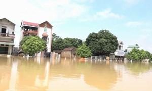 [Video] Vỡ đê bao, dân vùng ven Hà Nội bơi thuyền trong ngõ xóm
