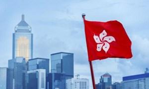 [Infographic] Hong Kong (Trung Quốc): Căn hộ nhỏ, lợi nhuận lớn