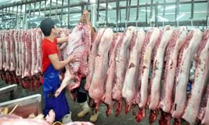 Việt Nam rộng cửa xuất khẩu thịt lợn