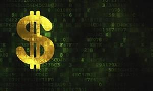 [Infographic] Hoạt động của sàn giao dịch tiền ảo