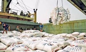 Dự kiến xuất khẩu gạo cả năm đạt 5,6 triệu tấn
