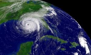 [Video] Bão Damrey có sức gió cả 100 km/h đang hướng vào Nam Trung Bộ