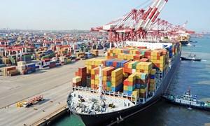 Xuất khẩu vào Trung Đông và châu Phi: Hướng đi chiến lược, dài lâu