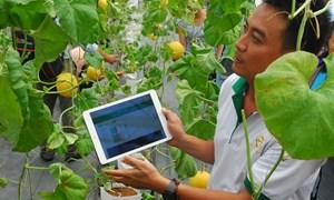 Giải pháp phát triển doanh nghiệp nông nghiệp ứng dụng công nghệ cao