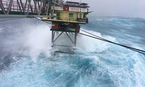 [Infographic] Cách phòng tránh an toàn trước bão Tembin