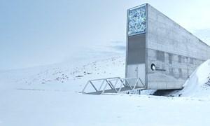 [Video] Căn hầm cất trữ hàng triệu hạt giống quý ở Bắc cực