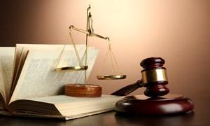 Những vụ án chấn động dư luận năm 2017