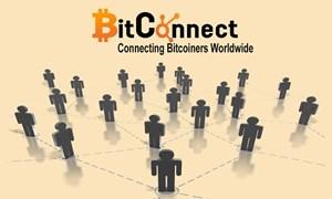 Bitconnect đóng cửa, nhiều nhà đầu tư có nguy cơ mất trắng