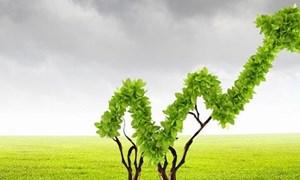 Huy động nguồn lực tư nhân cho tăng trưởng xanh