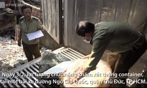 [Video] Lực lượng chức năng TP. Hồ Chí Minh bắt giữ 10 tấn nầm lợn thối nhập từ Trung Quốc