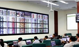Thực hiện tốt dịch vụ sau giao dịch, hỗ trợ thiết thực cho thị trường