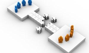 Củng cố và phát triển theo hướng chuyên nghiệp hóa