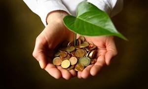 Đề xuất tăng thuế bảo vệ môi trường 11 mặt hàng