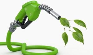 [Infographic] EU khuyến khích sử dụng nhiên liệu sinh học