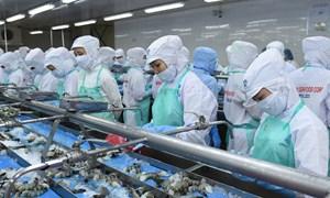 Đề nghị xem xét lại kết quả tính thuế chống bán phá giá cho tôm Việt